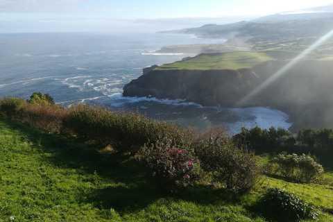 From Ponta Delgada: Furnas Valley and Furnas Lake Tour