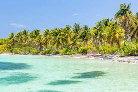 From Cancun: Isla Contoy Half-Day Tour