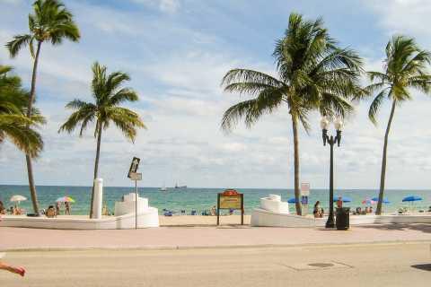 Miami: Miami - Port Everglades or FLL - Miami Port Transfer