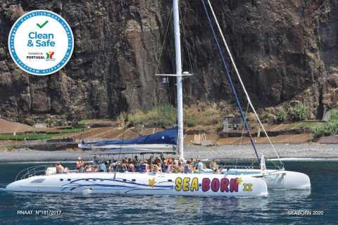 Funchal: avistamiento de delfines y ballenas en catamarán