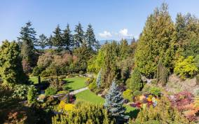 Vancouver: 2.5 Hour Guided Highlights Tour