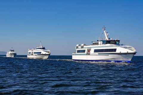 From Galway: Aran Islands & Cliffs of Moher Day Cruise