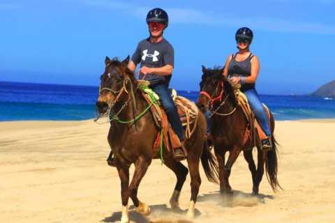 Cabo San Lucas: Beach & Desert Horseback Riding Tour