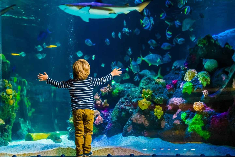 Helsinki: Eintrittskarten für das Sea Life