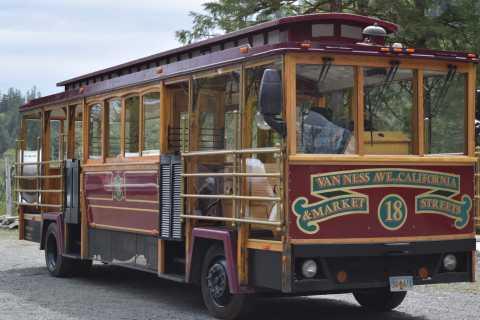 Ketchikan: Totem Pole, Wildlife & City Trolley Tour