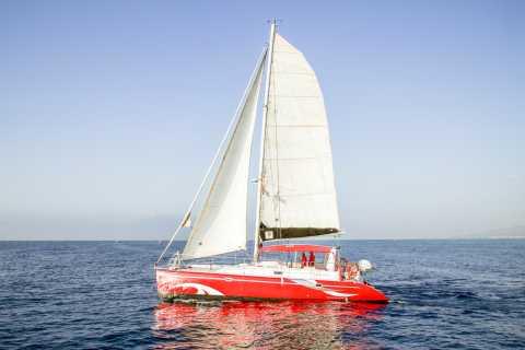 Barcelona: Passeio de Catamarã em Grupos Pequenos c/ Bebida