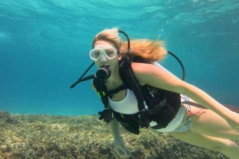 Maiorca: immersione in una splendida riserva naturale