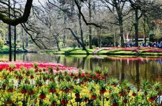 Tagestour zum Blumenpark Keukenhof