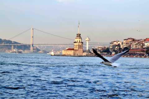 Istanbul: 3.5-Hour Guided City Tour with Bosphorus Cruise