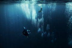 Bora Bora: passeio de barco pela lagoa de 3,5 horas com mergulho