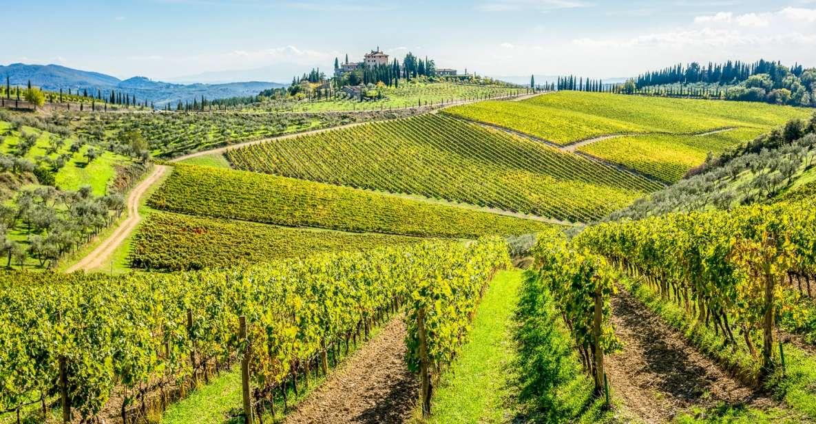 Florencia: tour de bodegas de Chianti con comida y vino