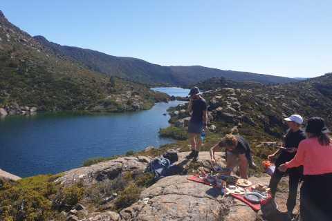 From Hobart: Mount Field National Park Wilderness Walk