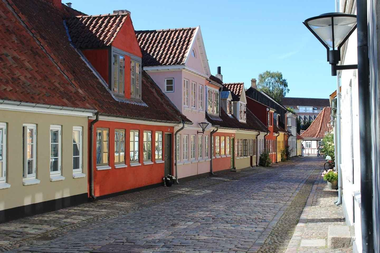 Odense: Private romantische Stadtrundfahrt