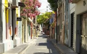 Palermo Soho: Empanadas and Wine Tasting Walking Tour