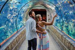 Las Vegas: Ingresso de entrada para o Shark Reef Aquarium em Mandalay Bay