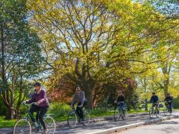 Victoria: 2-stündige Radtour zu Geschichte und Höhepunkten