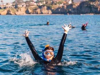 La Jolla: Geführte Schnorcheltour
