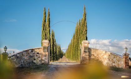Montalcino: ...