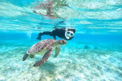 Ilha Miyako: experiência de caiaque e mergulho com snorkel