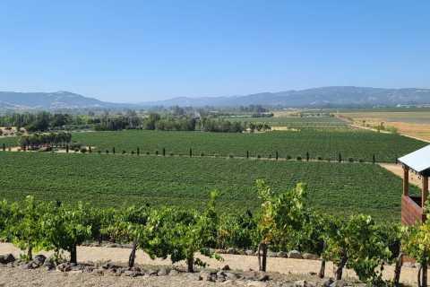 Sonoma County: Half-Day Wine Tour