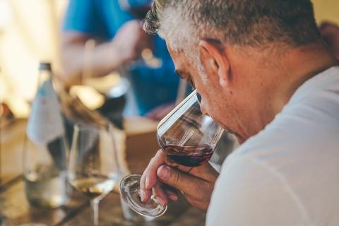 Ab Mailand: Piemont und Barolo Wine Day Tour mit Mittagessen
