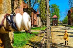 De Cracóvia: Tour Museu Auschwitz-Birkenau de Minivan