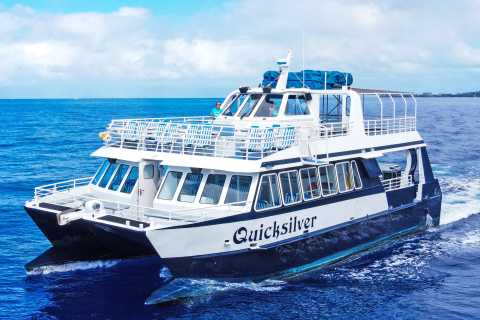 Lahaina, Maui: Lana'i Snorkeling and Dolphin Encounter