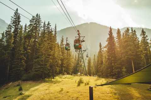 Banff: Banff Gondola Admission Ticket