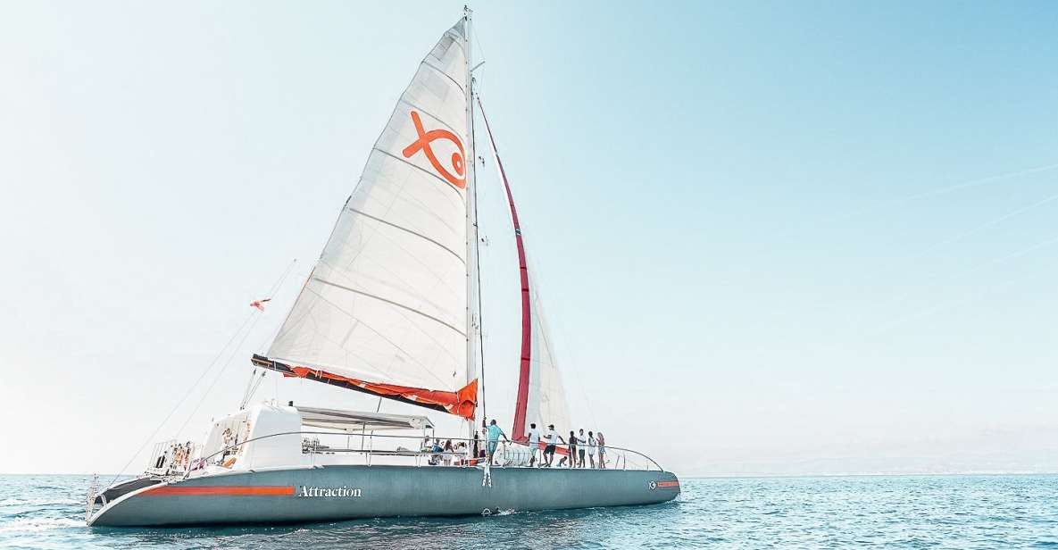 Palma de Mallorca: Half-Day Catamaran Tour with Buffet Meal