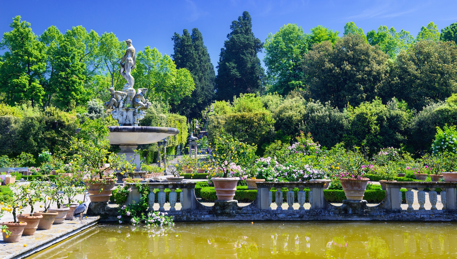 Palazzo pitti florence book tickets tours getyourguide for Jardines boboli