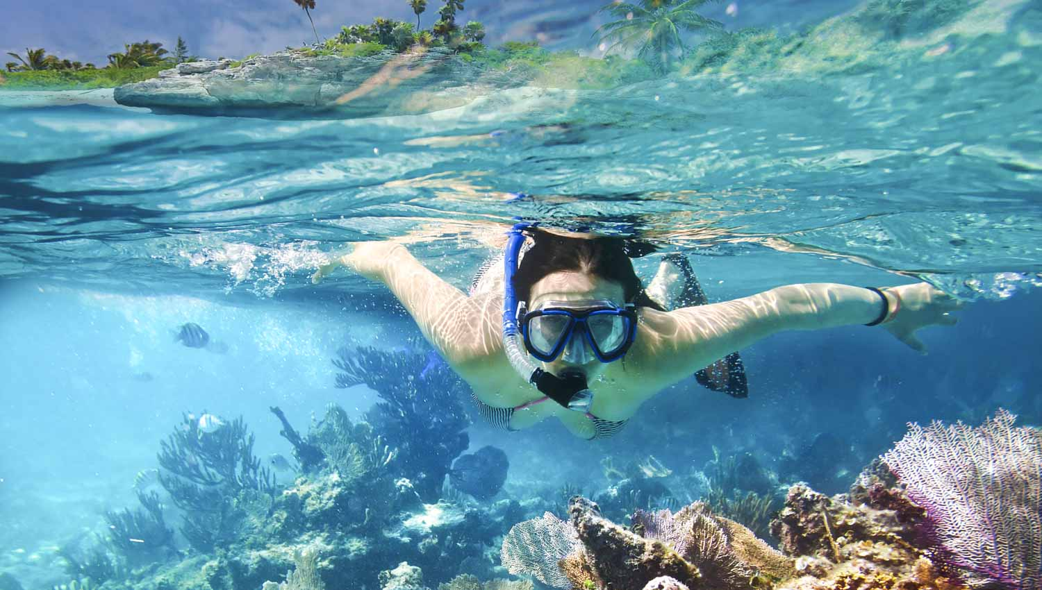 Green Turtle Cay 2 >> Things to do in Koh Samui Thailand: Tours & Sightseeing ...