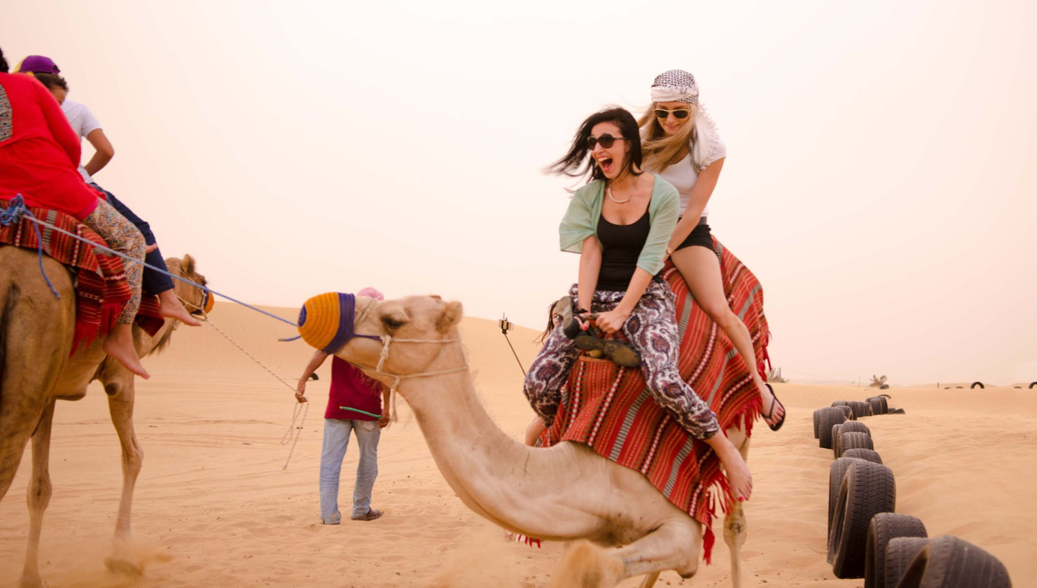 Image result for The Company has various Dubai desert safari tour offers.