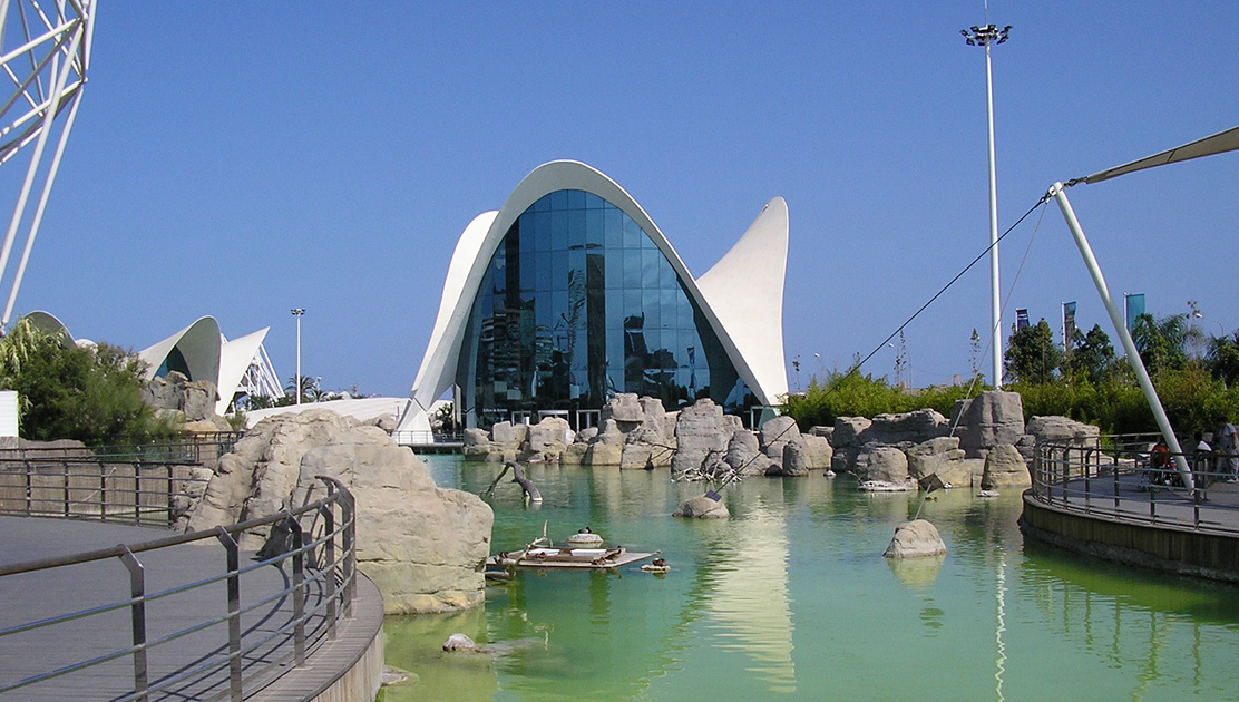 Things To Do In Valencia Spain Tours Amp Sightseeing