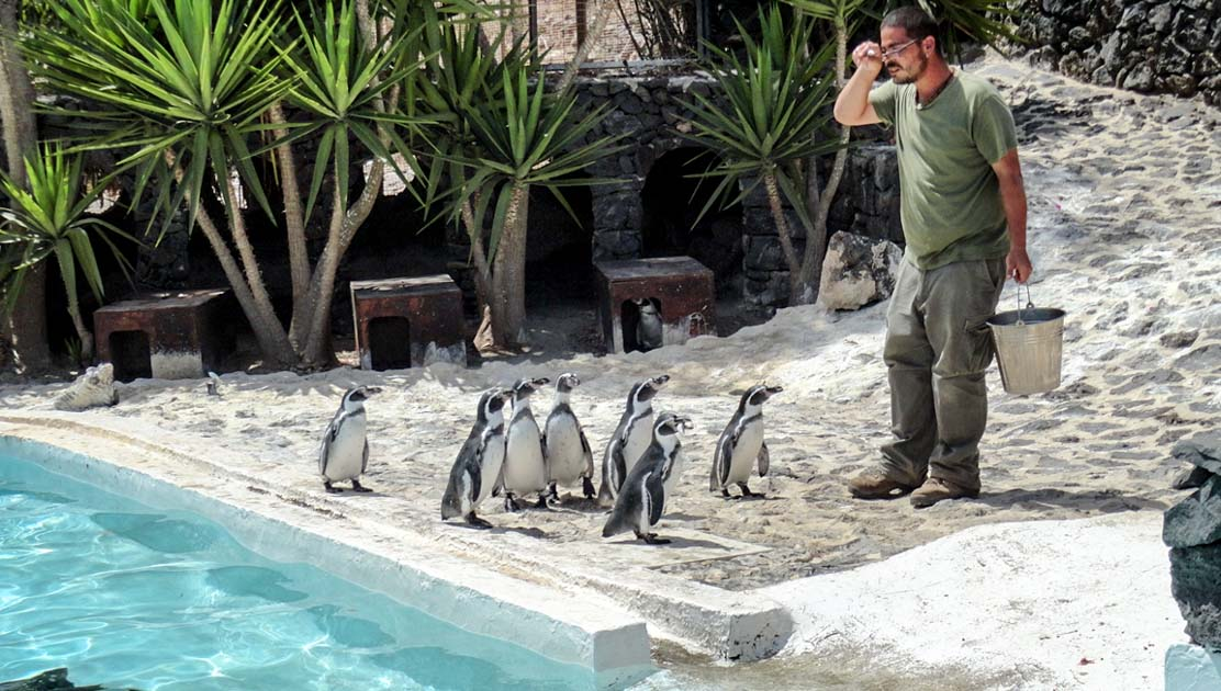 Guinate Tropical Park and Penguin Paradise
